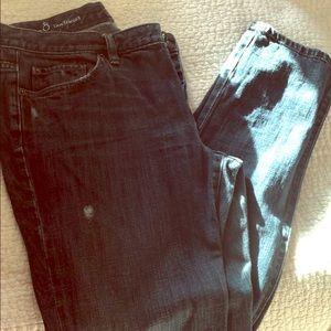 Ann Taylor loft boyfriend jeans